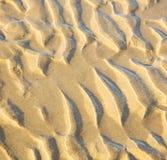 Düne Marokko im nassen Sandstrand der Afrika-Braunküstenlinie nahe atlan Stockfoto