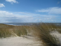 Dünen auf dem Strand stockfotografie