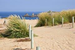 Dünen auf der Halbinsel von Quiberon in Frankreich lizenzfreies stockbild