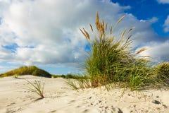 Dünen auf der Nordsee fahren auf die Insel Amrum, Deutschland die Küste entlang Lizenzfreie Stockfotografie