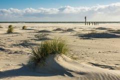 Dünen auf der Nordsee fahren auf die Insel Amrum, Deutschland die Küste entlang Lizenzfreies Stockfoto