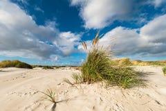 Dünen auf der Nordsee fahren auf die Insel Amrum die Küste entlang Lizenzfreie Stockfotografie