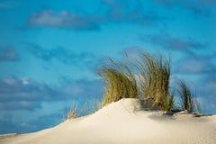 Dünen auf der Nordsee fahren auf die Insel Amrum die Küste entlang Lizenzfreie Stockbilder