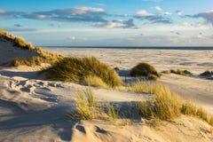 Dünen auf der Nordsee fahren auf die Insel Amrum die Küste entlang Stockfotografie