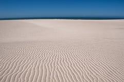 Dünen auf Strand Stockbild