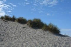 Dünen bedecken auf dem Nordseestrand mit Gras stockbild