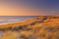 Dünen bei Sonnenuntergang auf Texel-Insel, die Niederlande lizenzfreie stockbilder