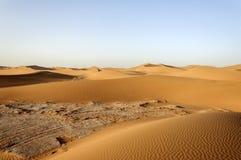 Dünen, Hamada du Draa, Marokko Stockfotografie