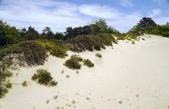Dünen im Strand-Bereich Lizenzfreie Stockfotografie