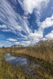 Dünen-Landschaft in den Niederlanden Lizenzfreies Stockfoto
