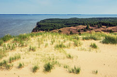 Dünen in Litauen Lizenzfreie Stockfotografie