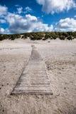 Dünen mit Bahn in der dänischen Nordsee fahren die Küste entlang Lizenzfreie Stockfotografie