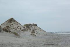 Dünen mit Gras an der Küste der Nordsee in Zeeland in den Niederlanden lizenzfreie stockfotos