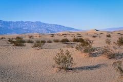 Dünen an Nationalpark Death Valley Lizenzfreie Stockfotografie