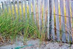 Dünenzaun auf dem Strand Stockbild