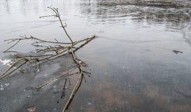 Dünnes Eis auf dem Teich im Frühjahr, Stockbild