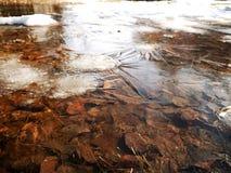 Dünnes Eis des Frühlinges auf den Pfützen stockfotografie