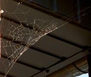 Dünnes weißes Spinnennetz, ausgedehnt unter das Dach des alten hölzernen Bades stockbilder