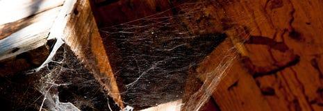 Dünnes weißes Spinnennetz, ausgedehnt unter das Dach des alten hölzernen Bades lizenzfreies stockfoto