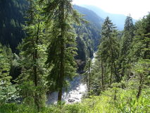 Dürrach crevice Bavaria. The array of beauty exists all over this picture, a stream runs through a mountain crevice lined up with tall extraordinary conifer Stock Photo
