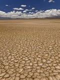 Dürre Lizenzfreies Stockfoto