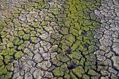 Dürrenland Unfruchtbare Erde Trocknen Sie gebrochene Erde Gebrochenes Schlammmuster Lizenzfreie Stockbilder