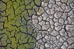Dürrenland Unfruchtbare Erde Trocknen Sie gebrochene Erde Gebrochenes Schlammmuster Stockfotografie