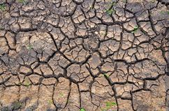 Dürrenland Unfruchtbare Erde Trocknen Sie gebrochene Erde Gebrochenes Schlammmuster Lizenzfreies Stockbild