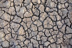 Dürrenland Unfruchtbare Erde Trocknen Sie gebrochene Erde Gebrochenes Schlammmuster Lizenzfreie Stockfotos