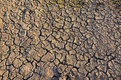 Dürrenland Unfruchtbare Erde Trocknen Sie gebrochene Erde Gebrochenes Schlammmuster Lizenzfreie Stockfotografie