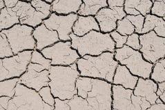 Dürrezustände Lizenzfreie Stockbilder