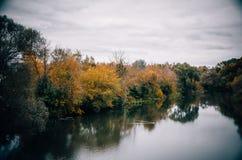 Düsterer Himmel, Fluss und Herbstbäume Stockfotografie