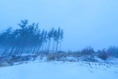 Düsterer nebelhafter Morgen in den Bergen Lizenzfreies Stockfoto