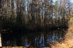 Düsterer Sumpf-Kanal Lizenzfreies Stockbild