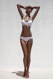 Dębny wzorcowy pozować w bikini i okularach przeciwsłonecznych. Fotografia Royalty Free