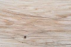 Dębowa tekstury próbka, inside widok w cięciu, lengthwise, dębowa struktura, twarde drzewo fotografia stock