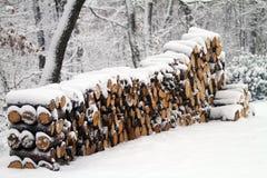Dębowego drewna bele zakrywać śniegiem Zdjęcie Royalty Free