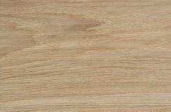 Dębowego drewna tekstura obrazy royalty free
