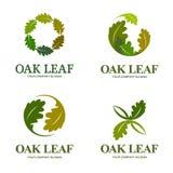 Dębowego liścia loga wektorowy set Loga szablon Obrazy Royalty Free