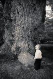 Dębowy drzewo i dziecko zdjęcie royalty free