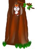 Dębowy drzewo z wiewiórką i ptakiem Zdjęcia Stock