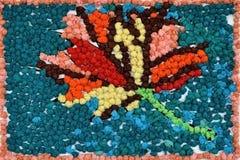 Dębowy liść, Zdjęcie Royalty Free