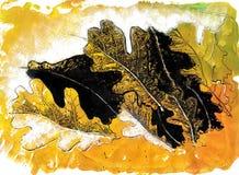 Dębowy liścia rysunek muśnięciem i atramentem Sylwetka i struktura royalty ilustracja