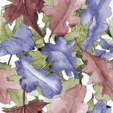 Dębowy liścia wzór w akwarela stylu Obraz Royalty Free