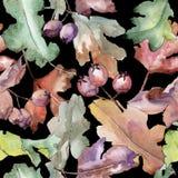 Dębowy liścia wzór w akwarela stylu Zdjęcie Stock