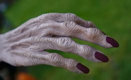 Dłudzy paznokcie w czerwonym gwoździa połysku kolorze obrazy stock