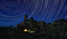 Dłudzy ujawnienie gwiazdy ślada W Joshua drzewa parku narodowym Zdjęcia Stock