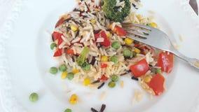 Dłudzy zbożowi ryż z warzywami Zdjęcia Stock