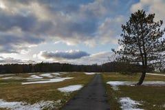 Długa Droga w krajobrazie drzewa i niebo obrazy stock