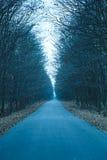 Długa jesieni droga cofa się w odległość obraz royalty free